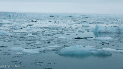 Glacier ice near Negribreen, Spitsbergen