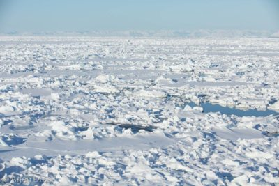 Dense pack ice north of Spitsbergen