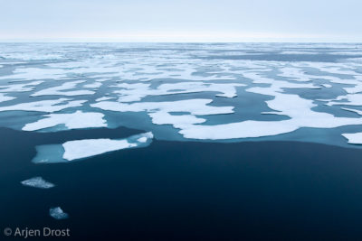 Pack ice at 82ºN, north of Spitsbergen